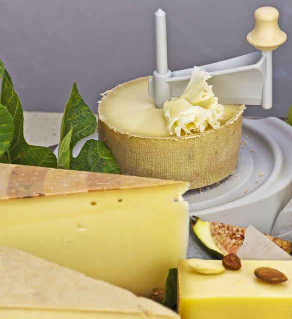 eine reichhaltige Käseplatte, gedeckt als Buffet, bestehend aus den unterschiedlichsten schweizer Käsesorten